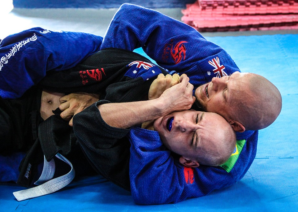 Top Jiu Jitsu Blogs – 2019